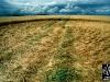 windmill-hill-wiltshire-uk-2000