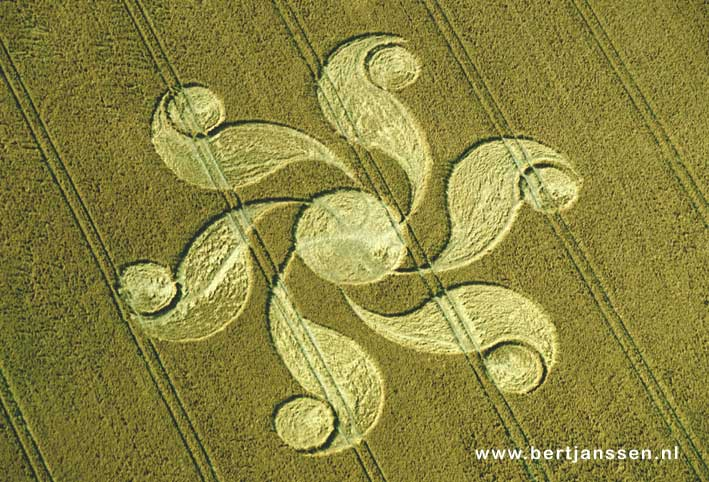 cropcircle_honeystreet-wiltshire-uk-2004