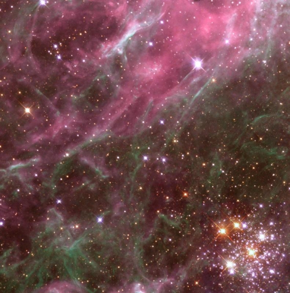 nebula_thehodge